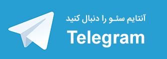 کانال تلگرام آنتایم سئو